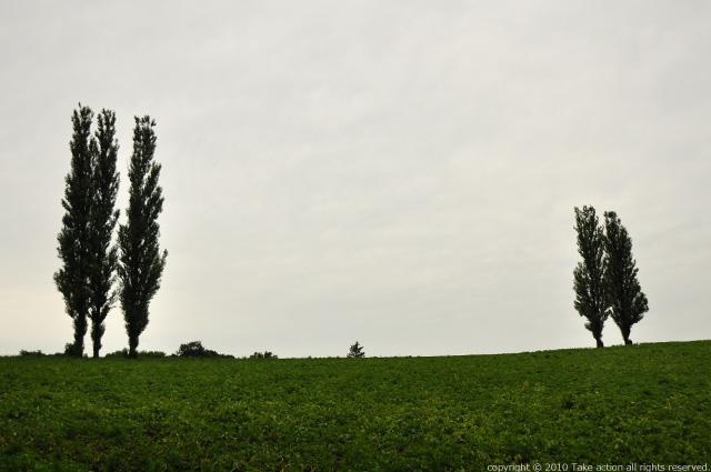 2011・8・16写真合宿2日目赤羽の丘1