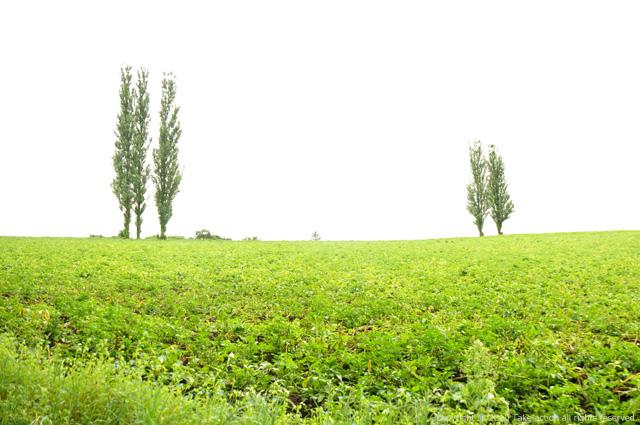 2011・8・16写真合宿2日目赤羽の丘2