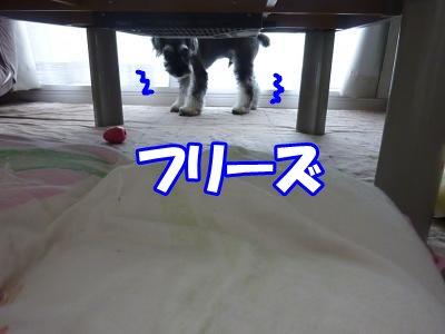 10_1+001_convert_20111001163526.jpg