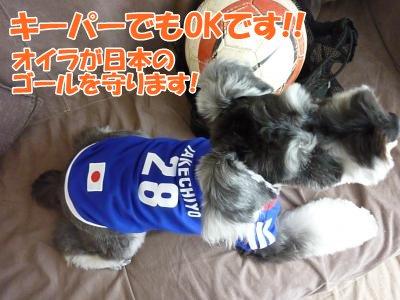 10_1+016_convert_20111001163944.jpg