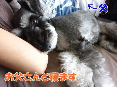 10_13+001_convert_20111014113752.jpg