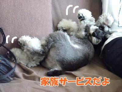 10_13+005_convert_20111014130927.jpg