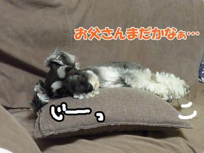 10_13+020_convert_20111014114256.jpg