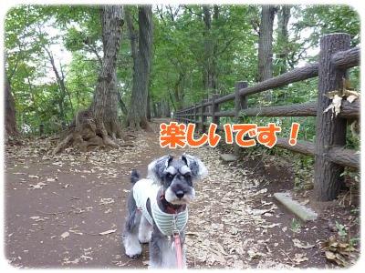10_13+038_convert_20111013132906.jpg