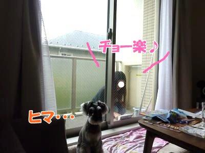 10_16+008_convert_20111016140128.jpg