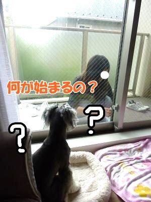 10_16+010_convert_20111016140400.jpg