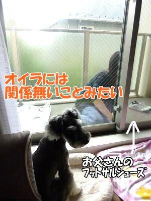 10_16+011_convert_20111016140419.jpg