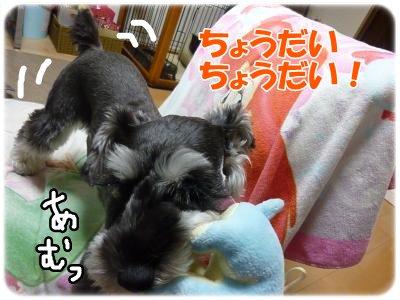10_18+011_convert_20111020093435.jpg