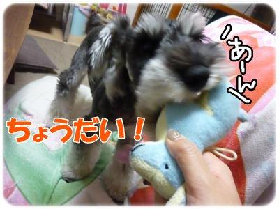 10_18+012_convert_20111020093519.jpg