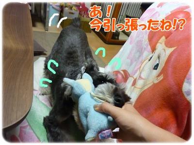 10_18+018_convert_20111020093727.jpg
