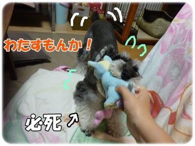 10_18+019_convert_20111020093800.jpg