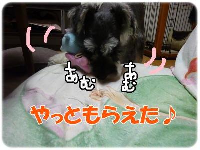10_18+020_convert_20111020093820.jpg