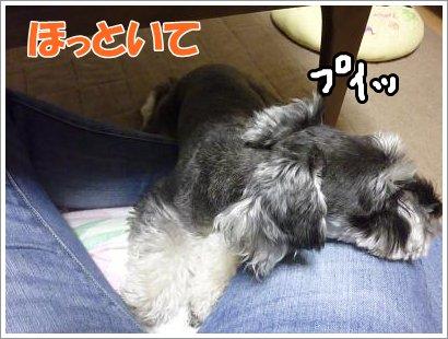 10_20+010_convert_20111020183926.jpg