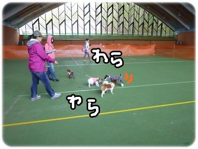 10_22+156_convert_20111022100342.jpg