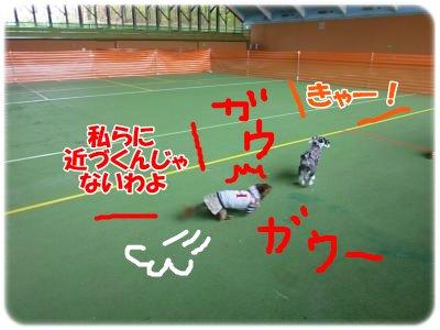 10_22+158_convert_20111022100427.jpg