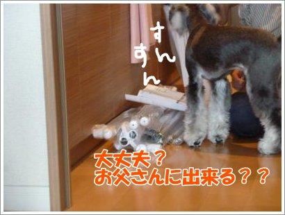 10_24+015_convert_20111024103755.jpg