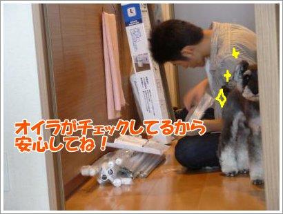 10_24+017_convert_20111024103847.jpg