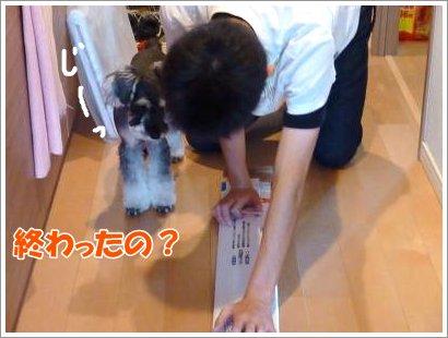 10_24+024_convert_20111024101341.jpg