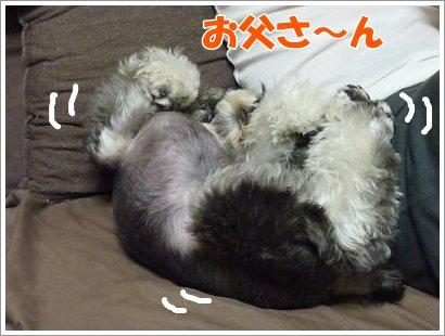 10_25+004_convert_20111025083406.jpg