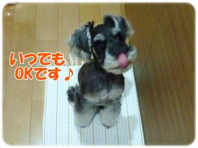 10_26+017_convert_20111025221025.jpg