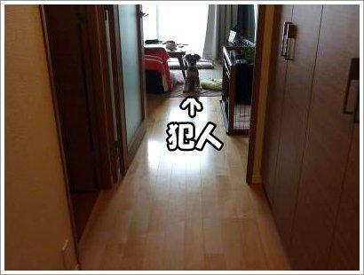10_27+004_convert_20111027092920.jpg