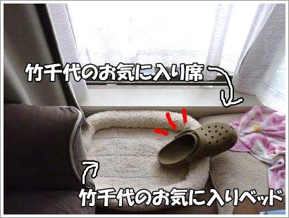10_27+009_convert_20111027093106.jpg