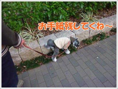 10_28+011_convert_20111028093723.jpg
