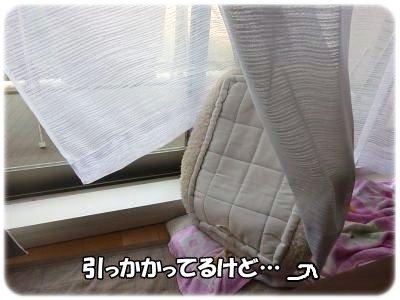 10_29+001_convert_20111029110419.jpg