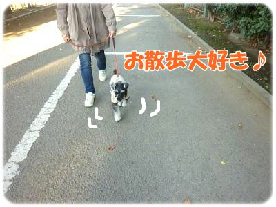 10_29+011_convert_20111029110723.jpg