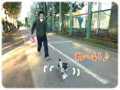 10_29+032_convert_20111029110818.jpg
