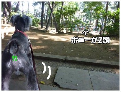 10_30+009_convert_20111030095717.jpg