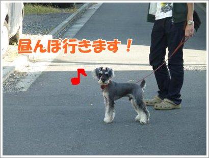 10_30+027_convert_20111030095334.jpg
