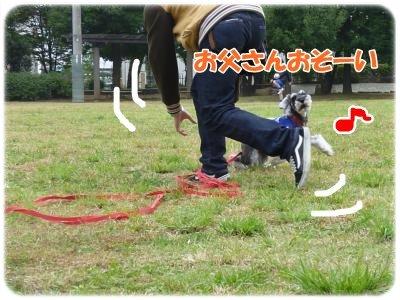 10_31+035_convert_20111031091421.jpg