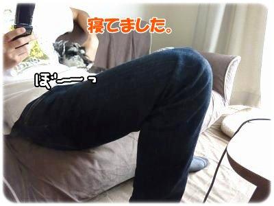 10_4+001_convert_20111103234551.jpg