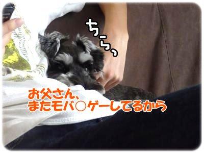 10_4+003_convert_20111103234758.jpg