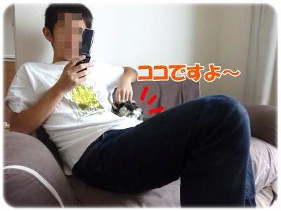 10_4+004_convert_20111103234434.jpg