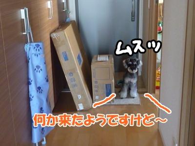10_8+001_convert_20111008133525.jpg