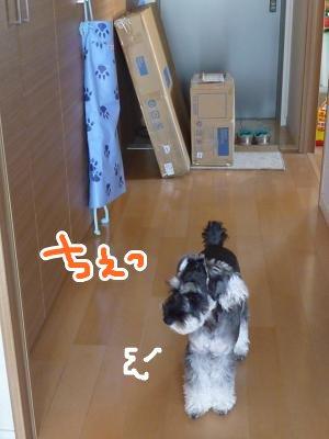 10_8+002_convert_20111008135850.jpg