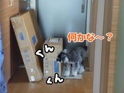 10_8+004_convert_20111008133605.jpg