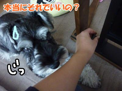 10_8+011_convert_20111008133726.jpg