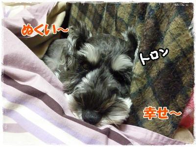 11_12+026_convert_20111113095201.jpg