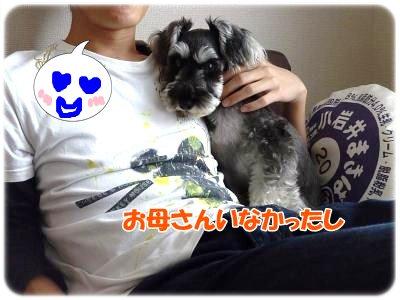 11_14+003_convert_20111114120950.jpg