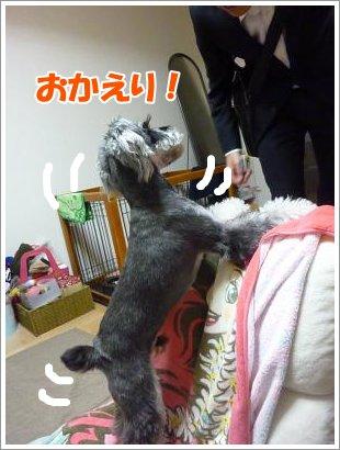 11_2+003_convert_20111102083933.jpg