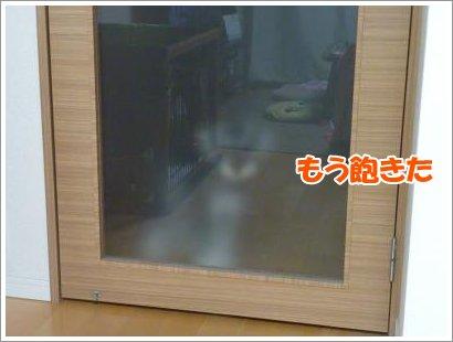 11_2+007_convert_20111102083806.jpg
