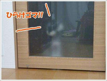 11_2+008_convert_20111102084008.jpg