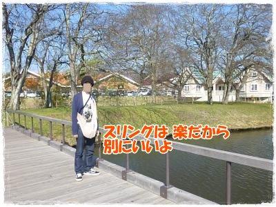 11_5+132_convert_20111106114535.jpg