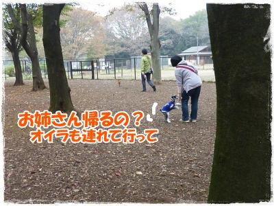 11_8+088_convert_20111110085856.jpg