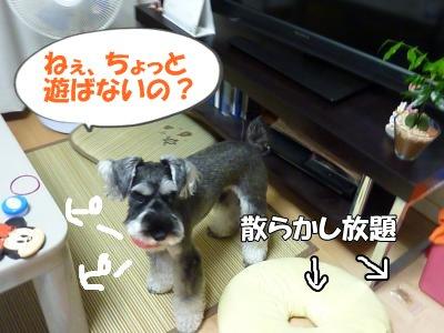 9_14+011_convert_20110914120229.jpg