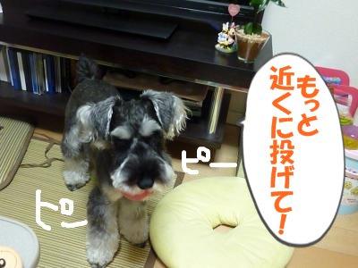9_14+012_convert_20110914122929.jpg