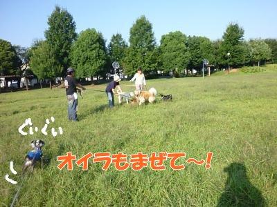9_19+124_convert_20110919174803.jpg